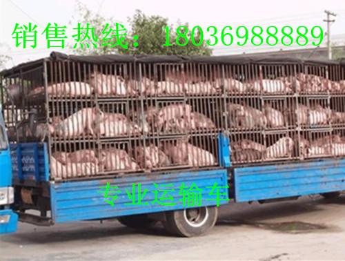 集宁三元广告最新一期